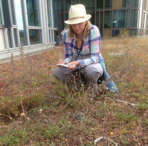 Botanical Surveys
